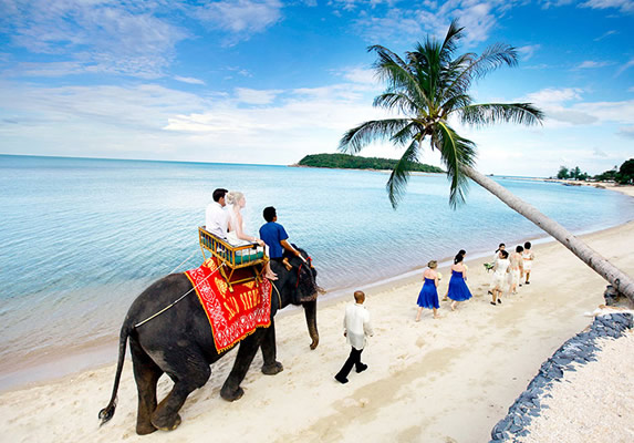 wedding-koh-samui